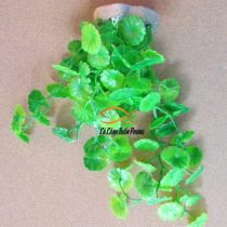 Cây Nhựa Nhỏ 03