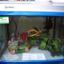 Bể Baolai R6 - 610
