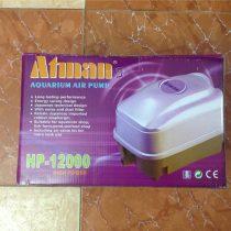 Atman HP-12000